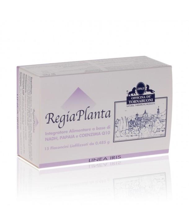 RegiaPlanta